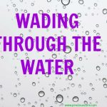 HERE'S WHAT'S UP: WADING THROUGH THE WATER