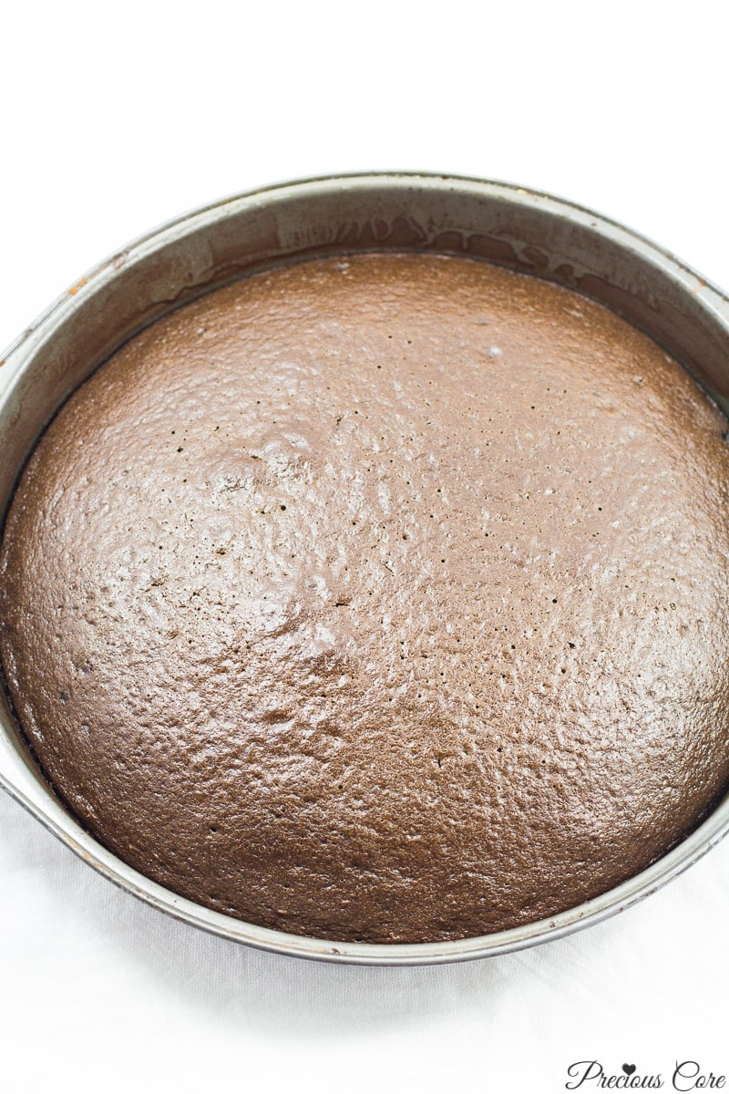 classic chocolate cake just baked