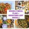 WEEKLY MEAL PLAN WEEK 2