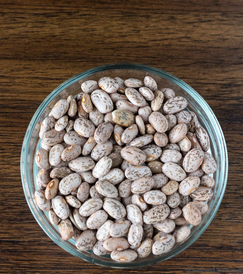 Bowl of dried pinto beans