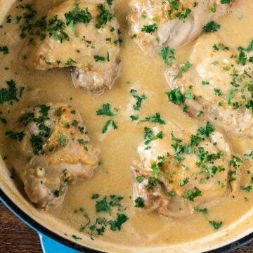Chicken in White Sauce recipe